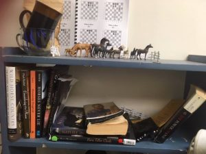 My horeses at The Arc, and partial horse library